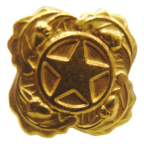 Odznak US HVĚZDA